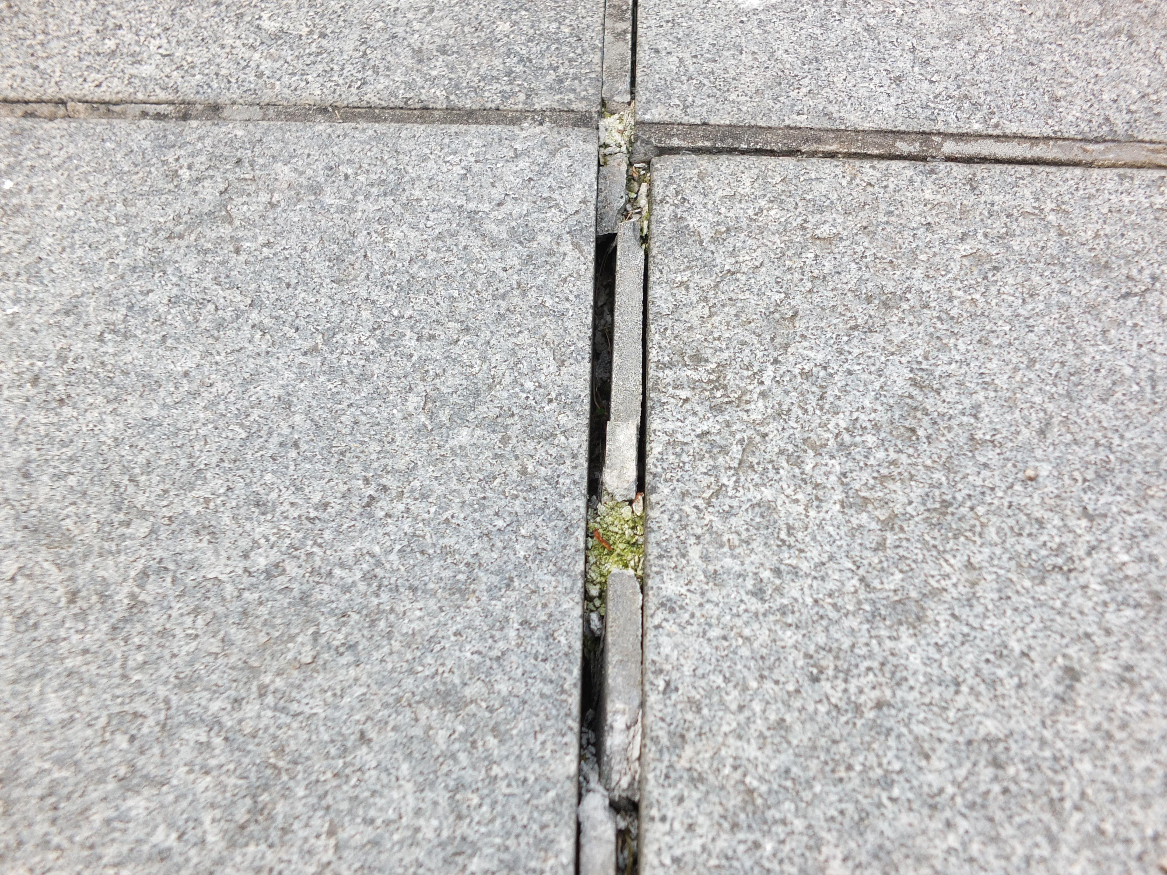 Voegen terrastegels herstellen