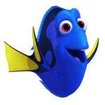 Profielfoto van Somiador